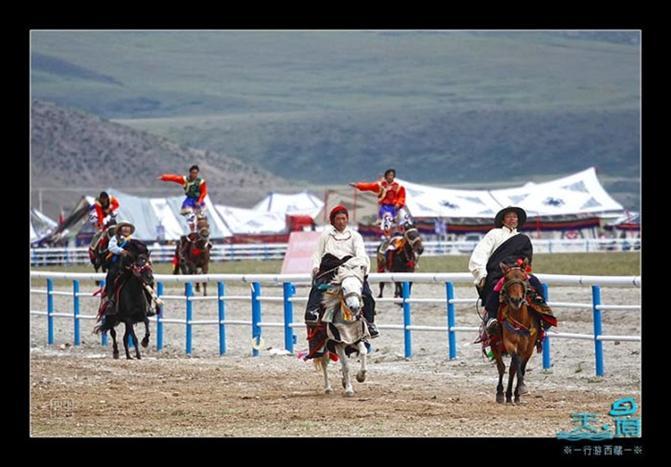 当雄赛马会:活动内容丰富多彩,其中主要有赛马、射箭、歌舞表演等。