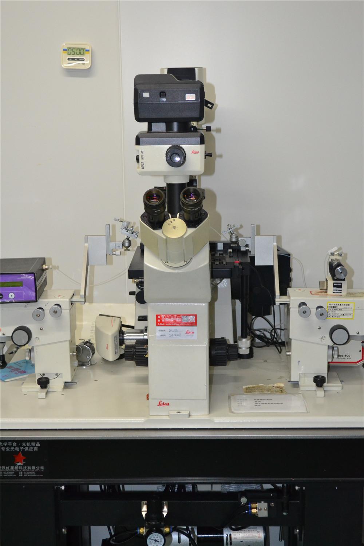 动物房--光学立体显微镜