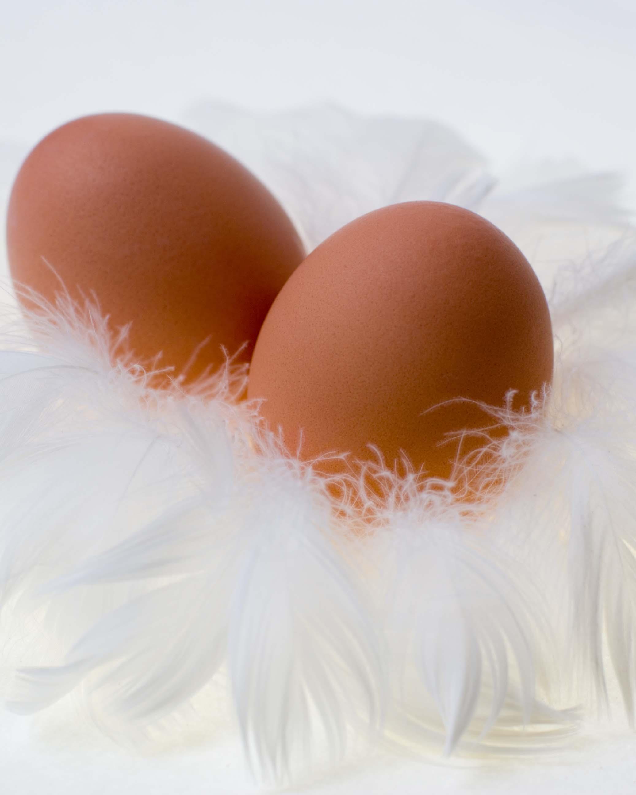 蛋黄会导致胆固醇飙升吗?