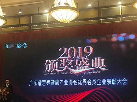 广东省营养健康产业协会2019颁奖盛典隆重召开,健乐蜂缘荣获两大荣誉奖项