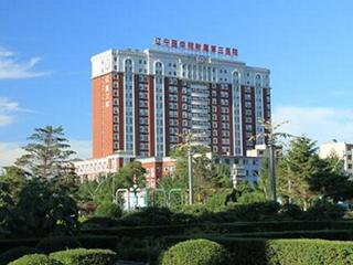 锦州医科大学附属第三医院