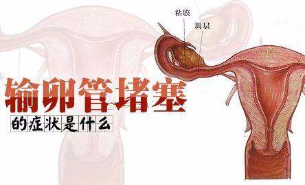 输精管堵塞病变该如何医治?