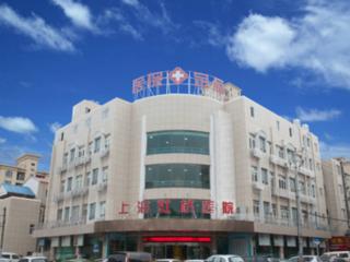 上海虹桥医院中医(风湿)科-简介